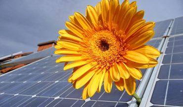 HART VAN HET HUIS – kies de beste batterij voor zonne-energie
